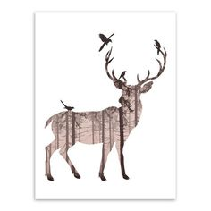 Modern Nordic Colorful Animals Silhouette Deer Elephant Canvas A4 Print Poster Wall Pictures Living Room Decor Painting No Frame