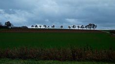 Der letzte Novembertag,  ...  ist halt, wie Novembertage oft aussehen. Grau, trüb, neblig, regnerisch, kühl und dunkel. Also hier bei uns. Doch in 110 Tagen ist Frühlingsanfang.  :-)