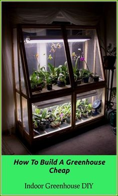 Broke college student = DIY Wardian Case – Orchid Forum Orchid Care - All About Gardens