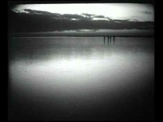 Recoltarea stufului in Delta Dunarii (1966) - YouTube