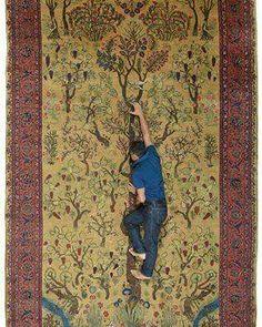 اتاق فکر فرش ایران.