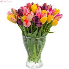 Pastel - Buchet cu lalele multicolore All Flowers, Fresh Flowers, Wholesale Roses, Best Honey, Tulip Bouquet, Calla Lily, Mother Nature, Fundraising, Tulips