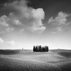 Black And White Landscape, Black N White Images, Black White, Abstract Landscape, Landscape Paintings, Landscapes, Farm Photography, Landscape Photography, Panorama Camera