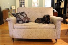 Retro chair--Just enough room for me and a pup.