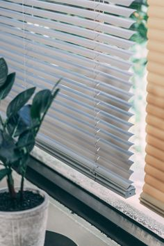 "Vinyl Mini Blinds are one of the most popular blinds on the market. This is because the 1"" slats are water resistant, warp resistant and provide full privacy @ an affordable price. Vinyl Mini Blinds, Curtains, Popular, Water, Beautiful, Home Decor, Gripe Water, Blinds, Decoration Home"