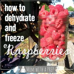 How to Dehydrate or Freeze Raspberries - Mom with a PREP