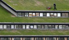 Gras maaien op het dak ;-)
