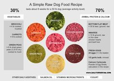raw foor diet for dogs