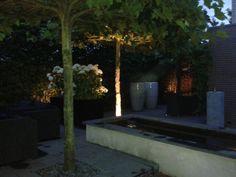 Tuin verlicht!