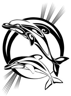 Biggest and Best - Quality images, fantastic flash and great ideas for Tribal Dolphin Tattoo