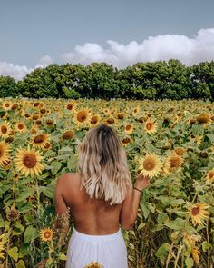 🌻🌻 flower fields are my jam #haylsapresets #sunflowerfield