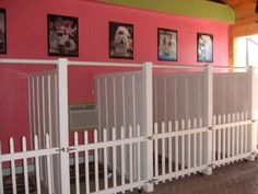 Now that's a doggie room! Don't think I could stand that many dogs in my house, but this would be the way to do it!