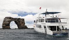 Make huge savings on Aggressor Fleet liveaboard holidays with Scuba Travel #scuba #diving #dive #trip #travel #holiday #vacation #Galapagos #Komodo #CocosIsland #liveaboard