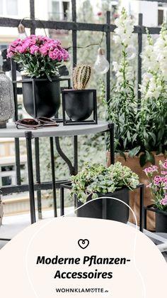 Wohnaccessoires, wie stylishe Blumentöpfe oder dekorative Vasen verleihen Deiner Einrichtung einen ganz persönlichen Stil. Wir zeigen Dir die schönsten Pflanzen-Accessoires und haben ein paar Ideen für Dich, wie Du damit Dein Zuhause gestalten kannst. Gardening, Modern, Plants, Decorative Vases, Small Trees, Personal Style, Planting, Succulents, Indoor House Plants