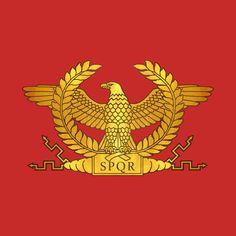Roman Legion, Warrior Spirit, Roman Soldiers, Flag Art, History Memes, Ancient Rome, Roman Catholic, Roman Empire, Coat Of Arms