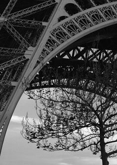 close up of iron work on the Eiffel Tower by MCR_Luvr