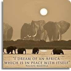 African Safaris Designed for the Discerning Traveller