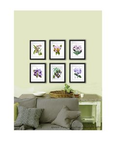 Set of 6 Vintage Purple violet Orchid Plant Prints Tropical Island Hawaiian Decor Wall Hanging Art prints 8x10 Bedroom Wall Decor