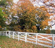 Classic country fence