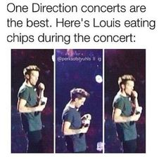 Twitter / TheDogHugo: One Direction concerts are ...