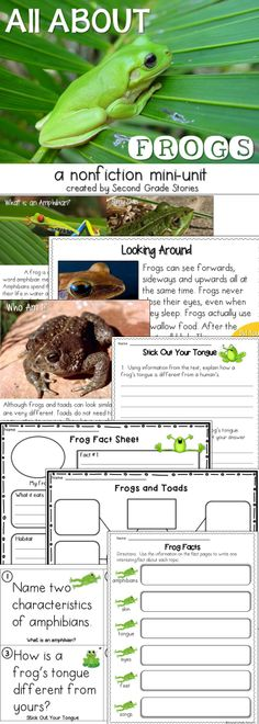 3 versions of frog fact cards; text dependent questions, graphic organizers, writing paper and a true/false sort