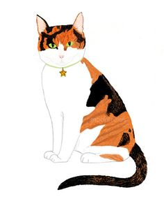 "Calico Cat Art - 8x10 print - Pen and Ink, Black, Orange, White, Cat Illustration, Modern Cat, Feline ""Cranberries the Cat"" by Lynn Huerta"
