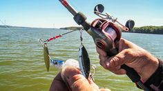 The need for SPEED! Most of us feel it from time to time, and so do the bass. KVD presents some killer how-to on burning spinnerbaits that WILL help you catch more shallow water bass.