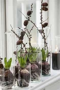 Terrific Pics Eclectic Decor plants Suggestions A strong contemporary way of adorning can be challenging. To get information regarding how to achieve this amazing visua Spring Decoration, Decoration Christmas, Noel Christmas, Winter Christmas, Art Floral Noel, Deco Table Noel, Deco Floral, Eclectic Decor, Winter Garden