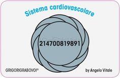 Tessera Radionica 35 - Sistema Cardiovascolare - Angelo Normalizzazione del sistema del cuore e delle vene e delle arterie.