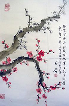 1000 Images About Cherry Blossom Chinese Plum On