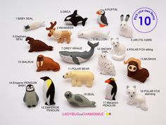 ARCTIC animals magnets special edition by LadybugOnChamomile Polar Animals, Felt Animals, Polar Bear, Baby Narwhal, Arctic Hare, Baby Penguins, Penguin Baby, Elephant Seal, Baby Seal