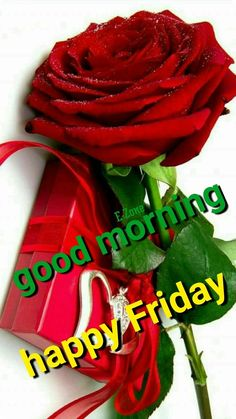 Good Morning Friday, Good Morning Coffee, Good Morning Messages, Good Morning Images, Blessed Friday, Happy Friday, Beautiful Morning Quotes, Lord Shiva Family, Its Friday Quotes