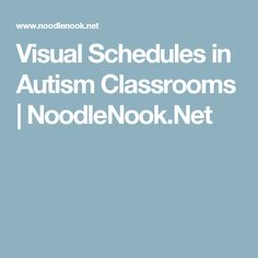 Visual Schedules in Autism Classrooms | NoodleNook.Net