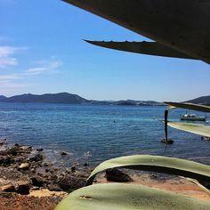 • Si invecchia meglio...•  #ibiza #sea #calamartina