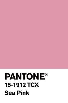 Nice shade of pink. Pantone Color Chart, Pantone Colour Palettes, Pantone Colours, Pantone Swatches, Color Swatches, Colour Pallete, Colour Schemes, Color Trends, Paleta Pantone