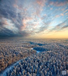 Top view of winter forest by Vladimir Melnikov on 500px