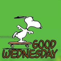THE WEEK IS SLIDING RIGHT BY SO THAT MAKES IT GOOD WEDNESDAY !!!!