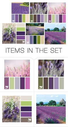 """""""Design Seeds - Lavender"""" by franceseattle ❤ liked on Polyvore featuring art"""