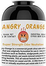Angry Orange Pet Odor Eliminator 8 oz bottle Industrial Strength Pet Odor Remover Makes 4 Bottles 1 Gallon Neutralizes and Sanitizes Tough Pet Odors Fast * You can get more details by clicking on the image.
