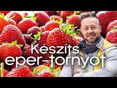 Strawberry, Fruit, Youtube, Tv, Gardening, Television Set, Lawn And Garden, Strawberry Fruit, Strawberries