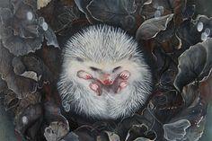 ART | ILLUSTRATION by Marjolein Caljouw: Hedgehog painting. (The Animal Kingdom)