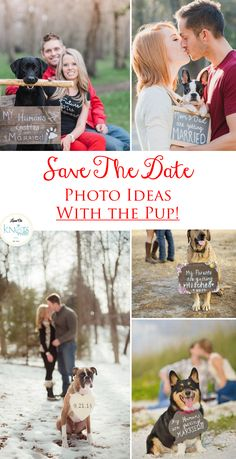 These are so cute!  Save the date photo ideas with the PUP! Forever adorable!