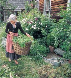 Tasha en su jardín
