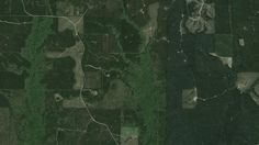 556 Acre Premier Timber & Hunting Property, 30 Minutes from Jackson