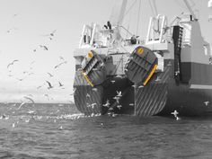 Morgere will be exhibiting at IceFish 2014. Seen here are the Morgere trawl doors in operation.