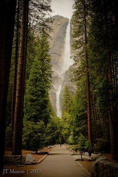 Yosemite Falls. The most beautiful park.