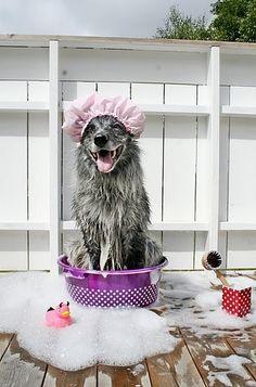 Splish Splash...love my bath!