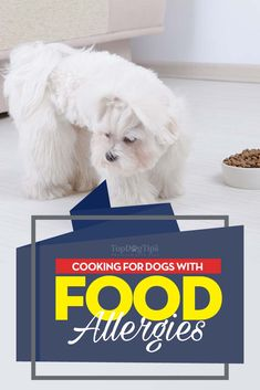 Food hypersivities or food allergies in dogs are very common. It cannot be cured but can be managed through avoidance and structuring a good dietary plan. Make Dog Food, Best Dog Food, Homemade Dog Food, Dog Skin Allergies, Common Food Allergies, What To Feed Dogs, Hypoallergenic Dog Food, Grain Free Dog Food, Dog Nutrition