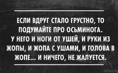 А вот осьминог не жалуется) | thePO.ST