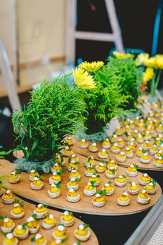 Wine & Dine'm Catering is Brisbane's premiere catering service with over 20 years of experience catering corporate events, private events and weddings. Bush, Catering Companies, Coconut Yogurt, Canapes, Scallops, Food Menu, Scones, Oysters, Seeds